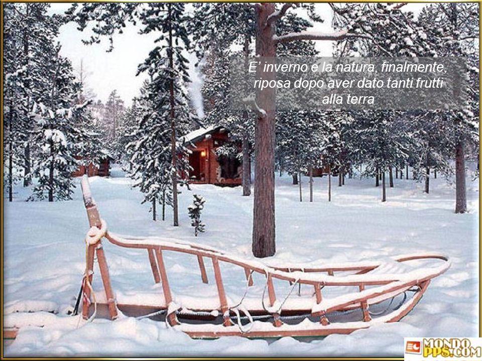 E inverno e la natura, finalmente, riposa dopo aver dato tanti frutti alla terra