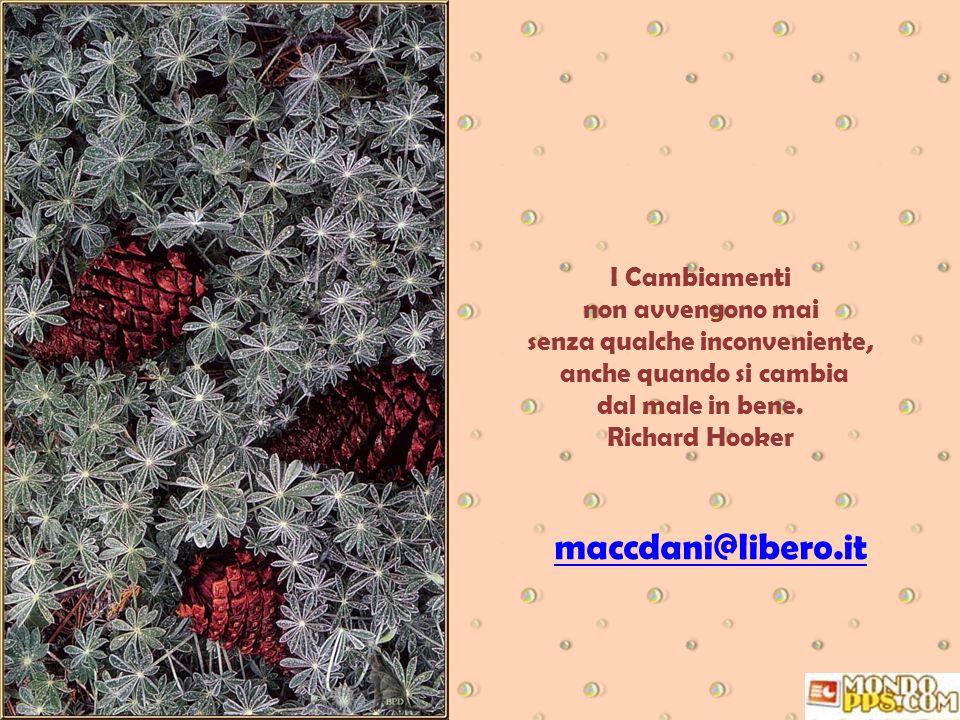Non bisogna cercare sempre il consenso degli altri, altrimenti si finisce con il far vivere agli altri la nostra vita. Elisa Cassinelli