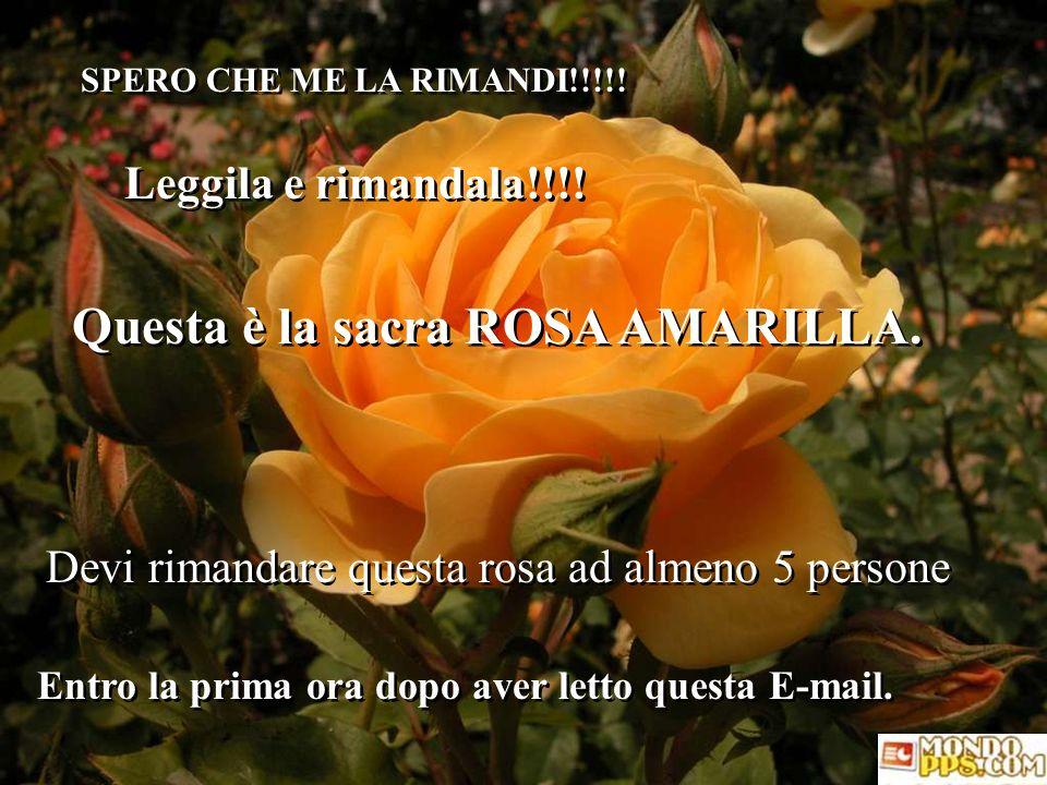 SPERO CHE ME LA RIMANDI!!!!.Leggila e rimandala!!!.