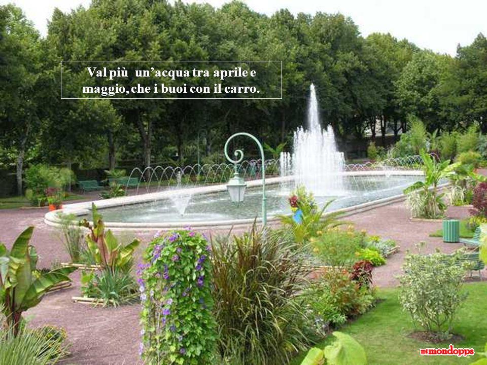 L acqua di maggio è come la parola di un saggio. Se piove ai primi di maggio, noci e fichi faran buon viaggio.