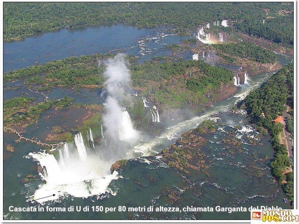 Cascata in forma di U di 150 per 80 metri di altezza, chiamata Garganta del Diablo