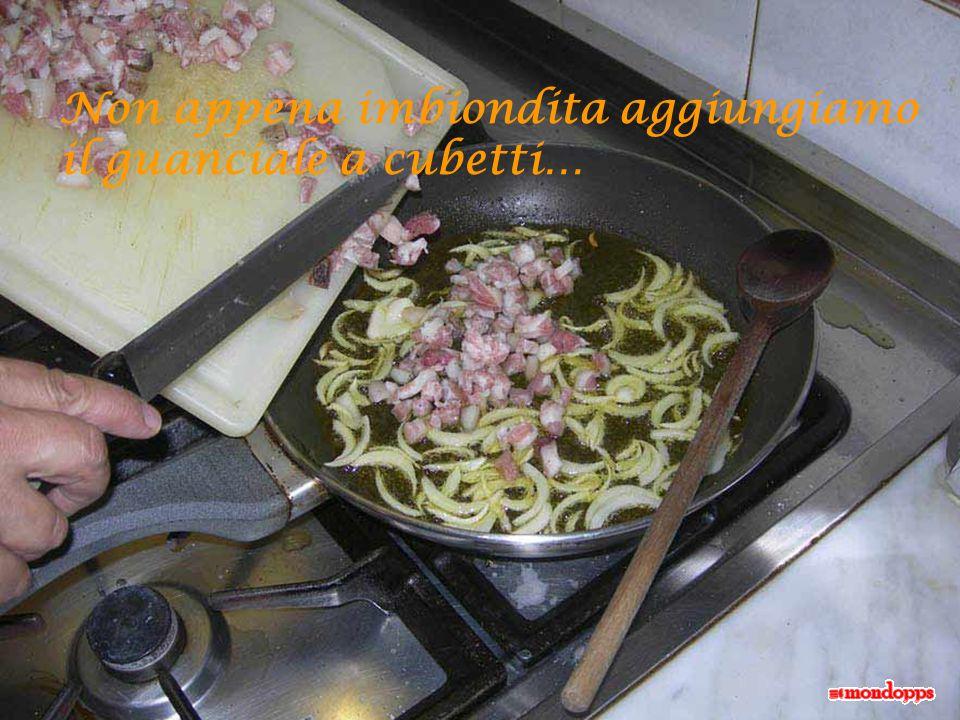 Tagliamo a fettine sottili la cipolla e lasciamola inbiondire con un filo di olio di oliva…
