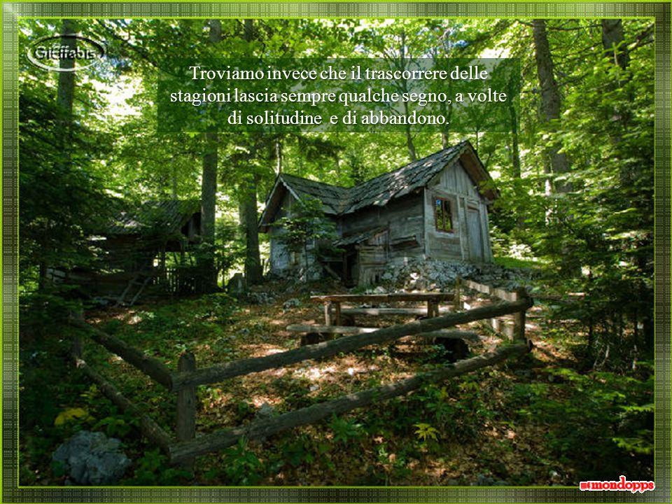 Troviamo invece che il trascorrere delle stagioni lascia sempre qualche segno, a volte di solitudine e di abbandono.