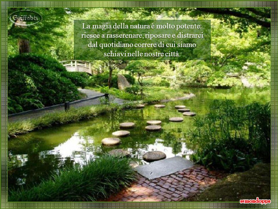 Ogni volta che abbiamo lopportunità di trovarci immersi nel verde, come per magia, ci sentiamo subito più calmi.