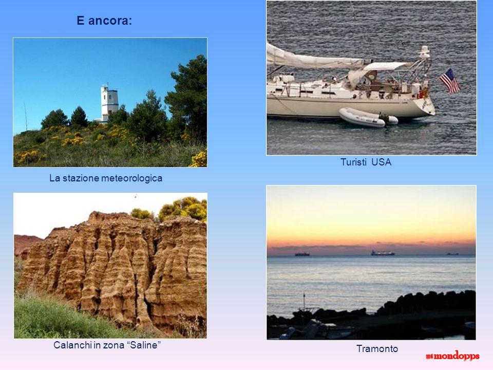 Anche dal punto di vista naturalistico Palinuro presenta delle sorprese: tra la macchia mediterranea, cespugli di mirto, ginestre ed erica, le pareti