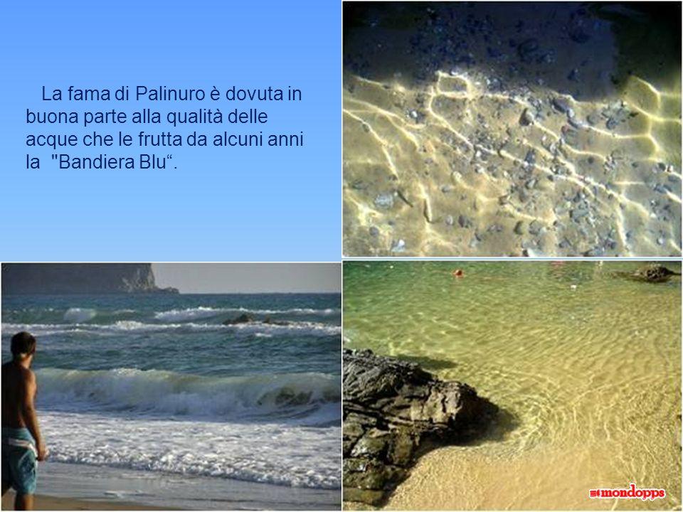 La fama di Palinuro è dovuta in buona parte alla qualità delle acque che le frutta da alcuni anni la Bandiera Blu.