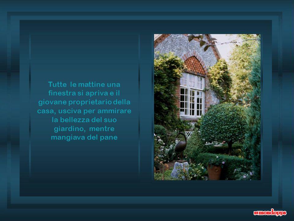 Tutte le mattine una finestra si apriva e il giovane proprietario della casa, usciva per ammirare la bellezza del suo giardino, mentre mangiava del pane