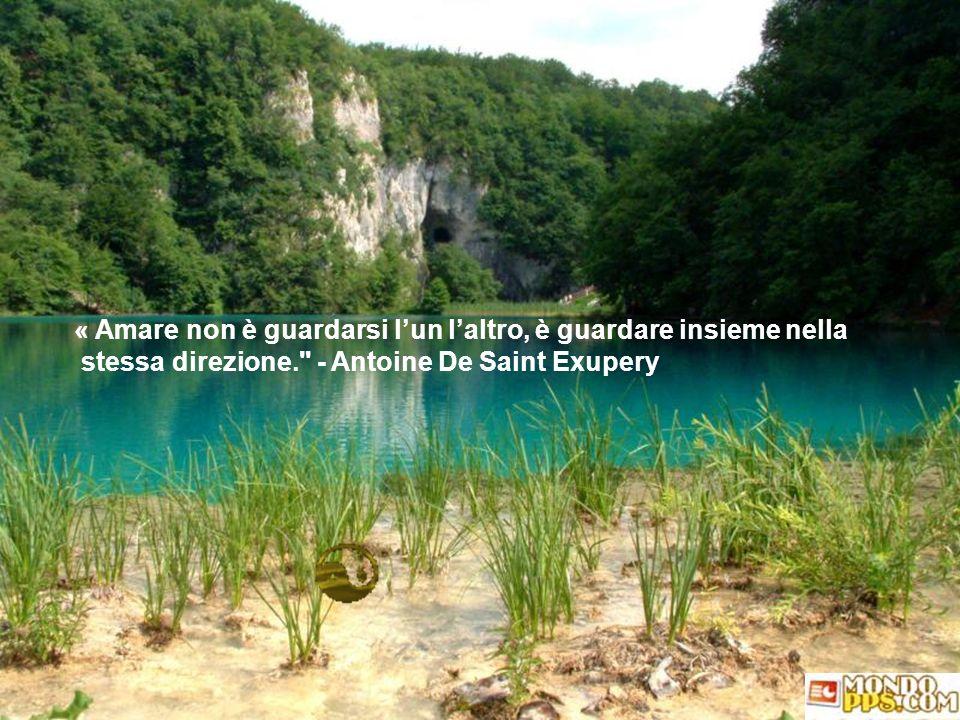 I talenti si sviluppano nei luoghi pacifici, il carattere nei flutti della vita umana. - Johann Wolfgang Van Goethe.