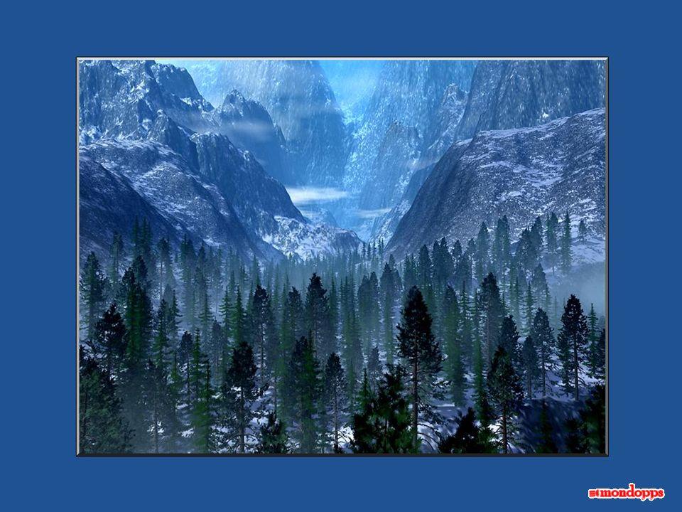 La maturità arriva improvvisamente, così come la neve. Una mattina ti svegli, e ti rendi conto che tutto è bianco.
