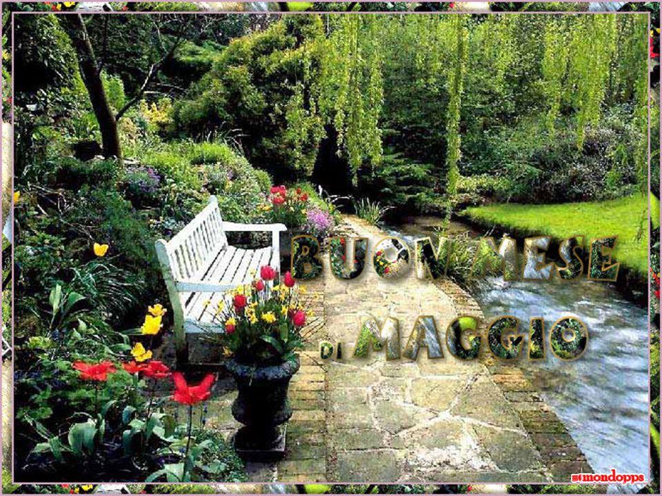 Arriviamo in un orto botanico: un incredibile concentrazione di profumi, di colori ed emozioni di profumi, di colori ed emozioni