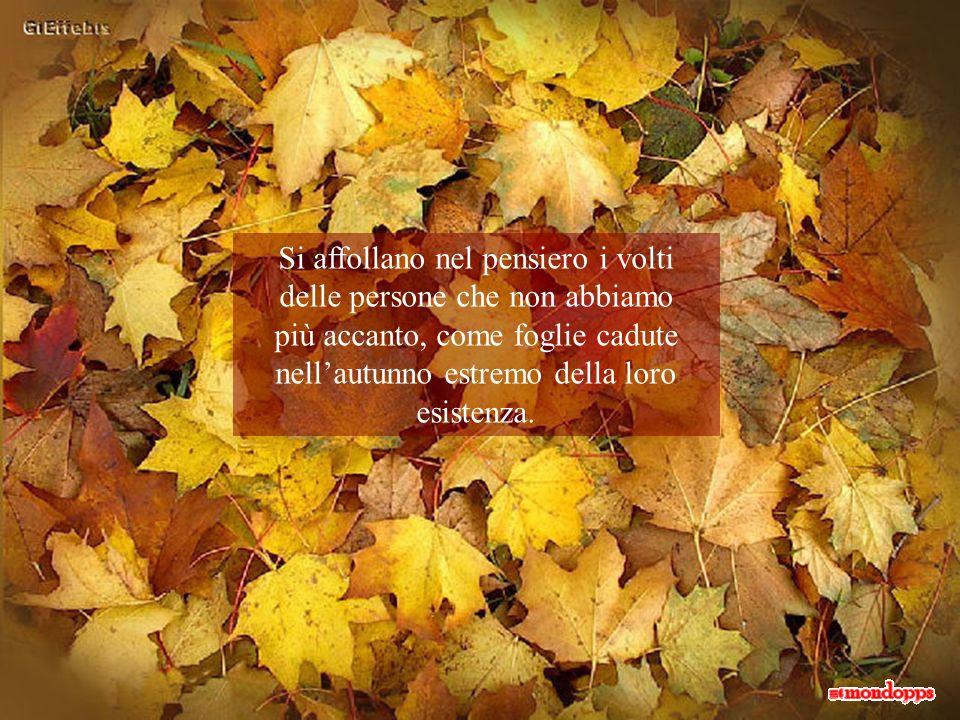 Quel punto di incontro è un autunno, una foglia ingiallita dal tempo che, lentamente, cade: è la fine di qualcosa che lascia posto al nuovo