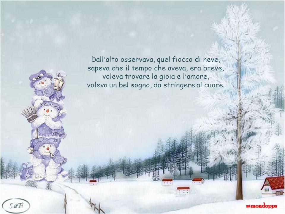 Dallalto osservava, quel fiocco di neve, sapeva che il tempo che aveva, era breve, voleva trovare la gioia e lamore, voleva un bel sogno, da stringere al cuore.