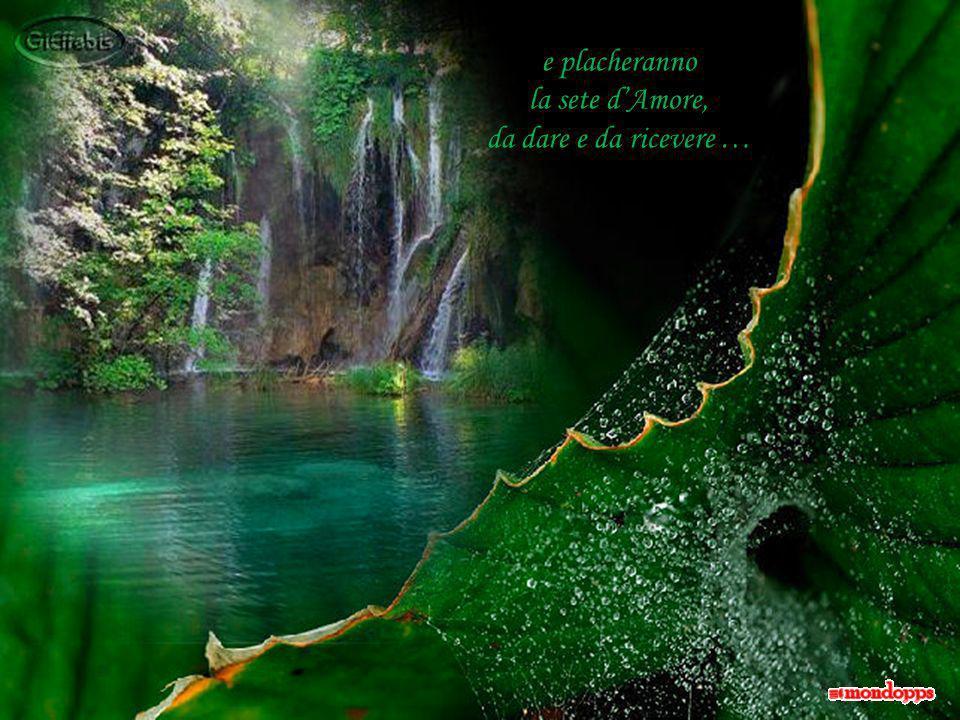 Altre poesie, stille di amore, spunteranno al sole di maggio e, come cerchi nellacqua, si spanderanno attorno donando un po di sollievo …