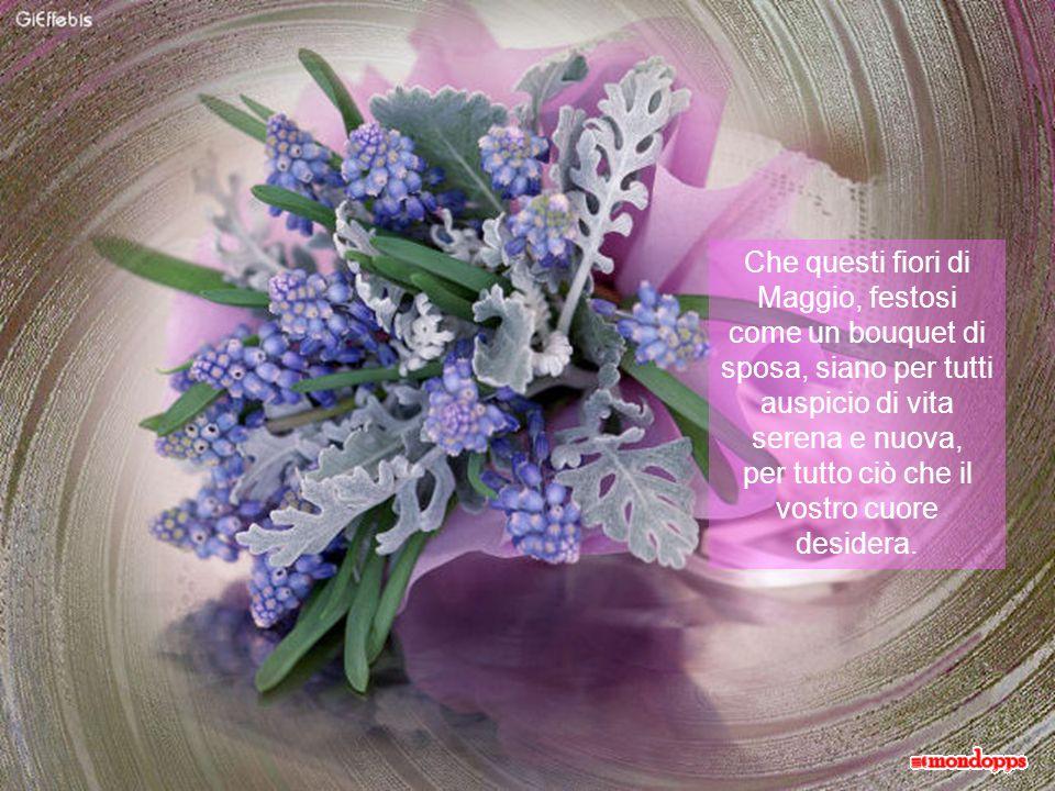 Se linverno ci insegna la speranza e la pazienza dellattesa, la primavera, che volge al termine nel tepore del mese di Maggio, si pregusta con tutta la gioia del presente
