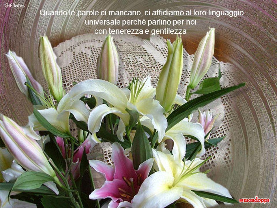 Quando le parole ci mancano, ci affidiamo al loro linguaggio universale perché parlino per noi con tenerezza e gentilezza