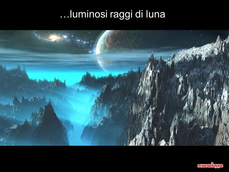 …luminosi raggi di luna