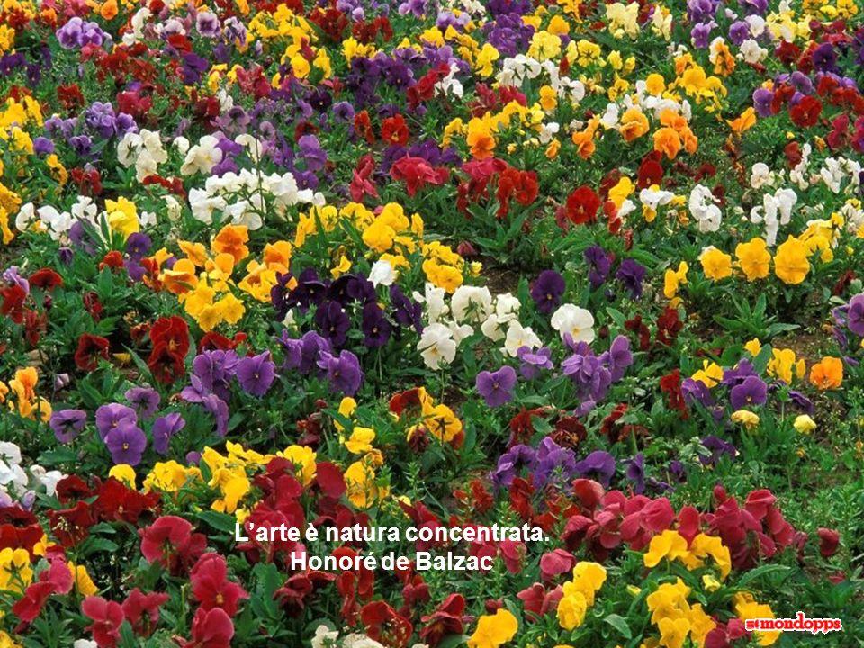 Larte è natura concentrata. Honoré de Balzac