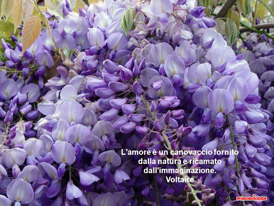 L amore è un canovaccio fornito dalla natura e ricamato dall immaginazione. Voltaire