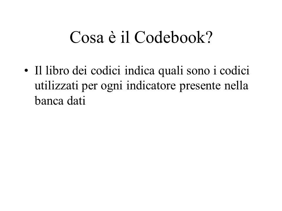 Cosa è il Codebook? Il libro dei codici indica quali sono i codici utilizzati per ogni indicatore presente nella banca dati
