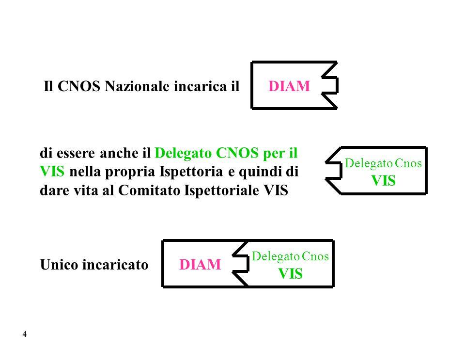 Il CNOS Nazionale incarica ilDIAM di essere anche il Delegato CNOS per il VIS nella propria Ispettoria e quindi di dare vita al Comitato Ispettoriale