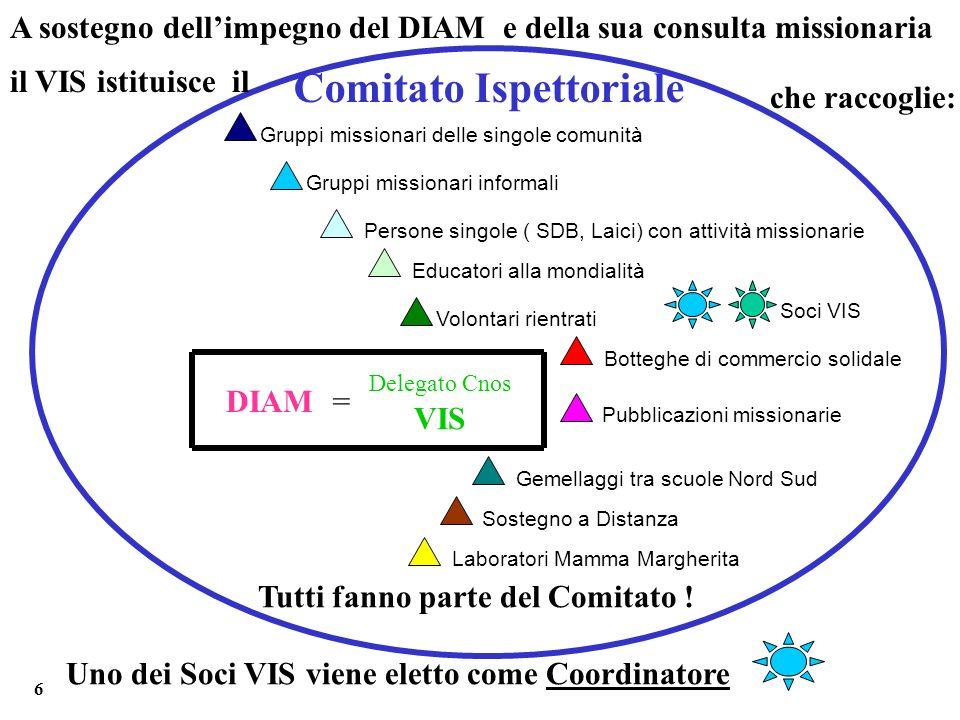 A sostegno dellimpegno del DIAM e della sua consulta missionaria il VIS istituisce il Tutti fanno parte del Comitato ! Uno dei Soci VIS viene eletto c