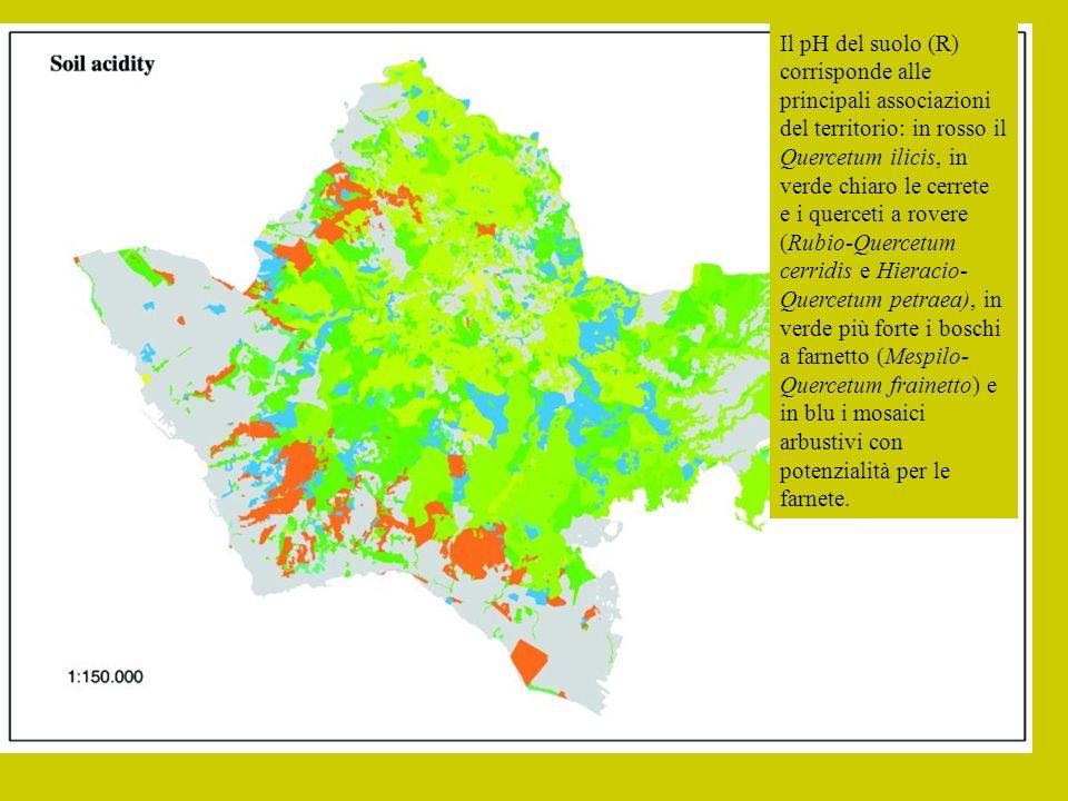 : Il pH del suolo (R) corrisponde alle principali associazioni del territorio: in rosso il Quercetum ilicis, in verde chiaro le cerrete e i querceti a