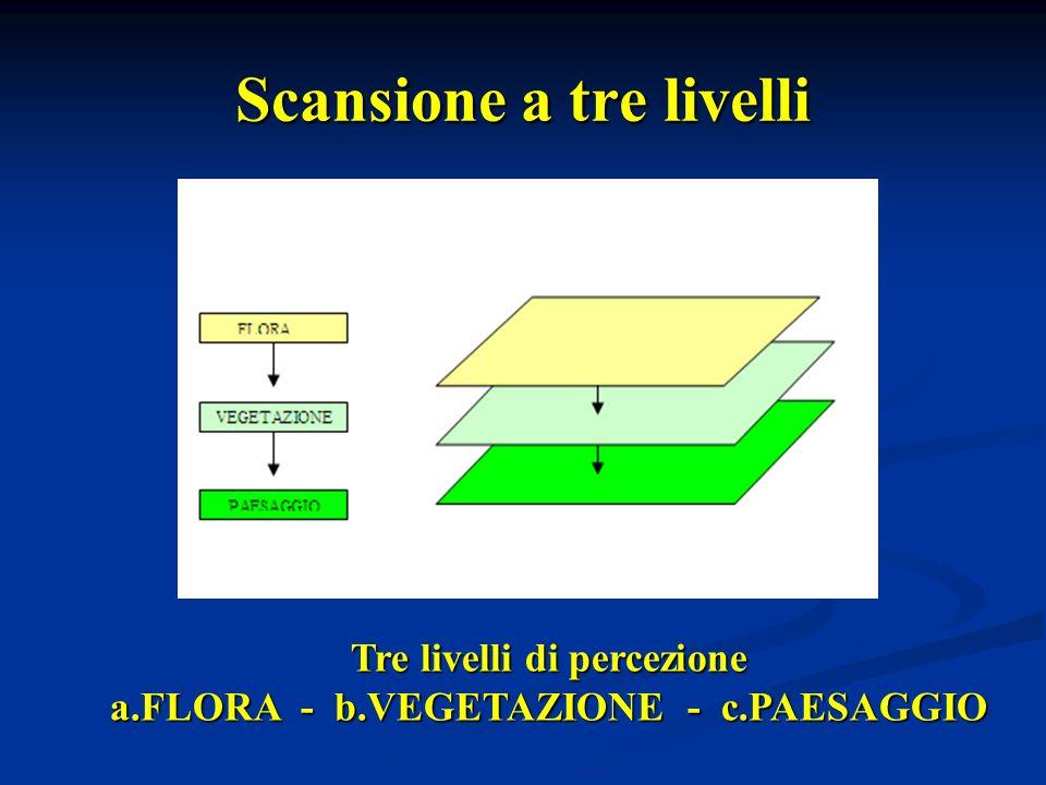 Scansione a tre livelli Tre livelli di percezione a.FLORA - b.VEGETAZIONE - c.PAESAGGIO