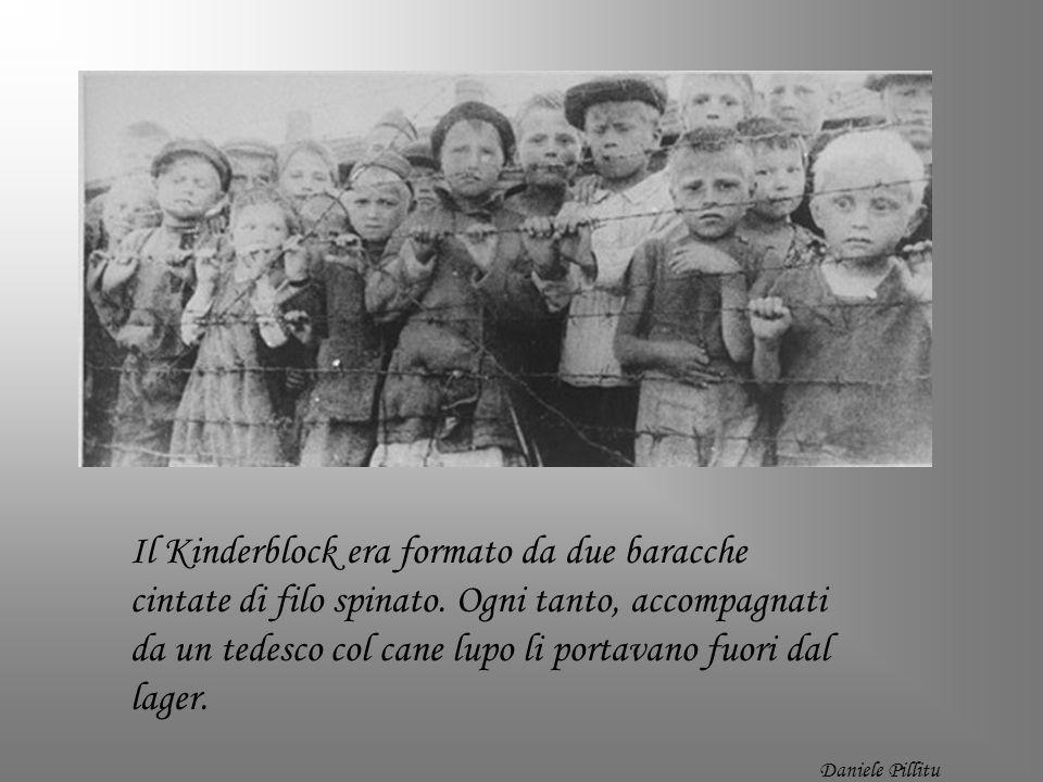 Il Kinderblock era formato da due baracche cintate di filo spinato. Ogni tanto, accompagnati da un tedesco col cane lupo li portavano fuori dal lager.