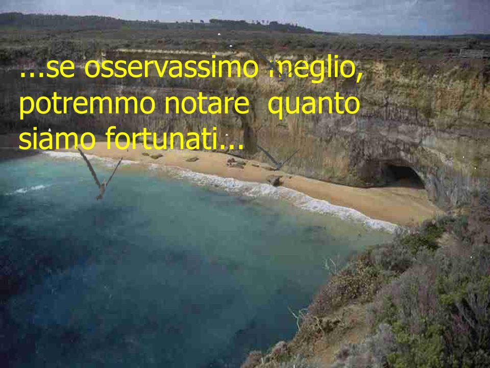 ...sognamo quello che ci manca, senza dare valore a quello che abbiamo vicino...