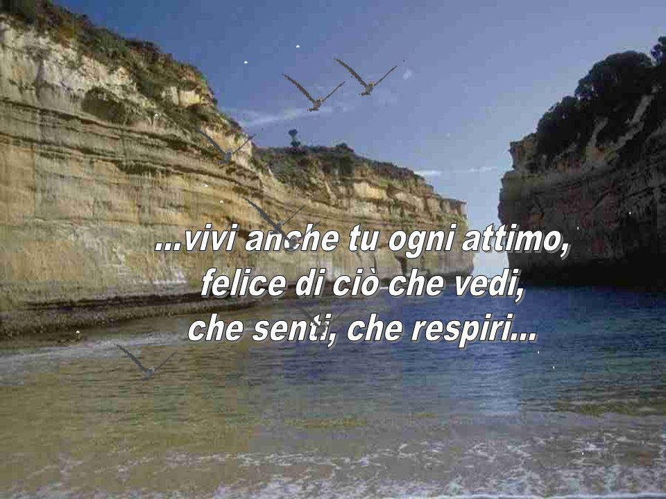 ...ognuno di noi può decidere se vivere con gioia ogni giorno o gettare tutto in mare...