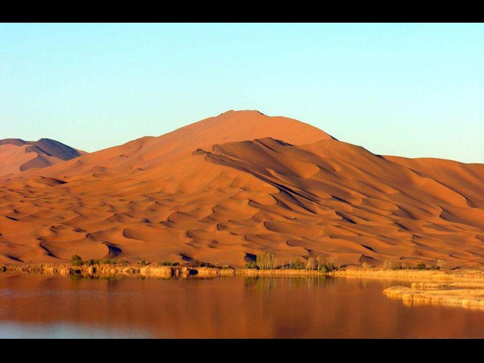 Questo il risultato: un magnifico deserto con tante lagune