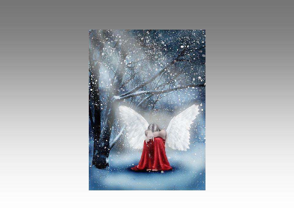 Che desiderio grande, irrealizzabile forse: vorrei fare un dono in questo Natale, alle persone che incontro, a voi che ogni giorno incrociate la mia s