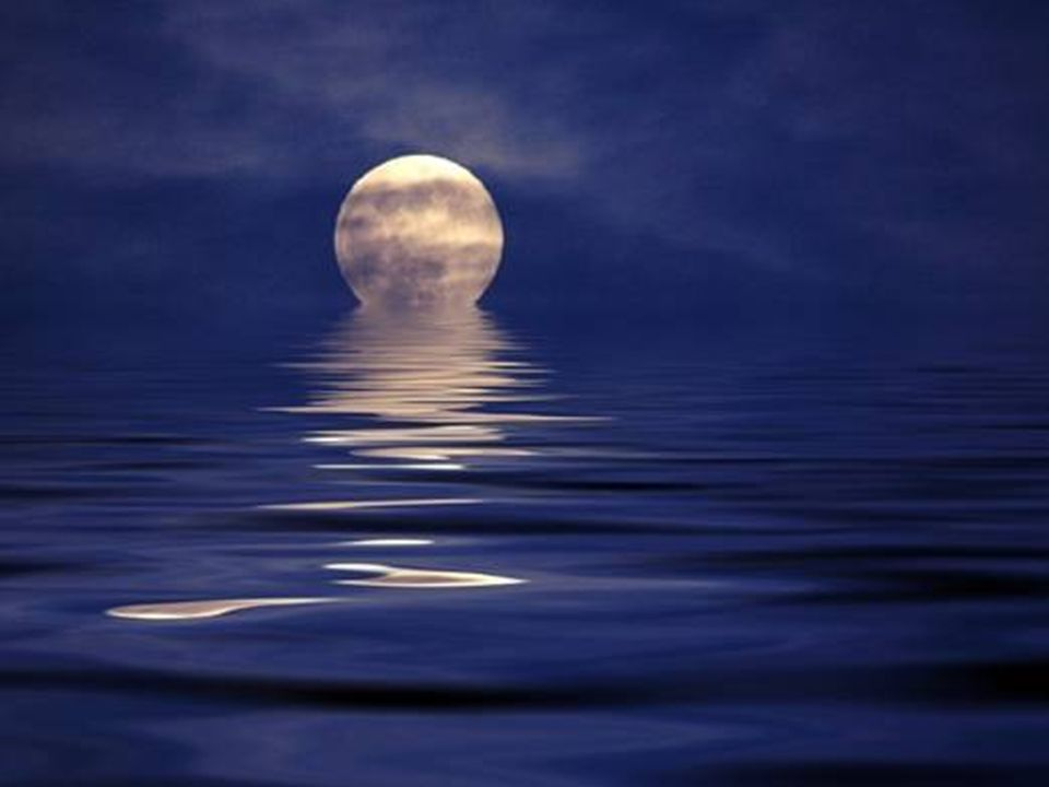 Mi mancherai anche quando la luna sarà lì, la guarderò stagnare nel colore denso della notte, sarà un po come guardarti, avere l illusione d averti ancora vicina, Francesco Quercia