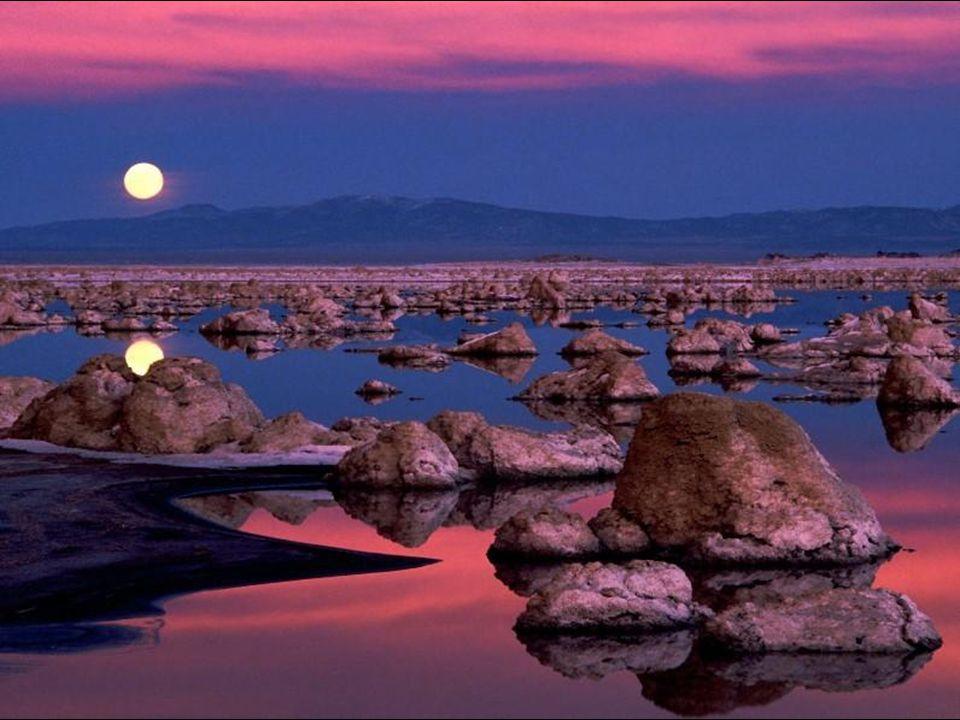 Coriandoli argentei riversa stanotte la luna sul mare e l'onda cullandoli accresce il loro incantevol brillare. Ignazio Amico