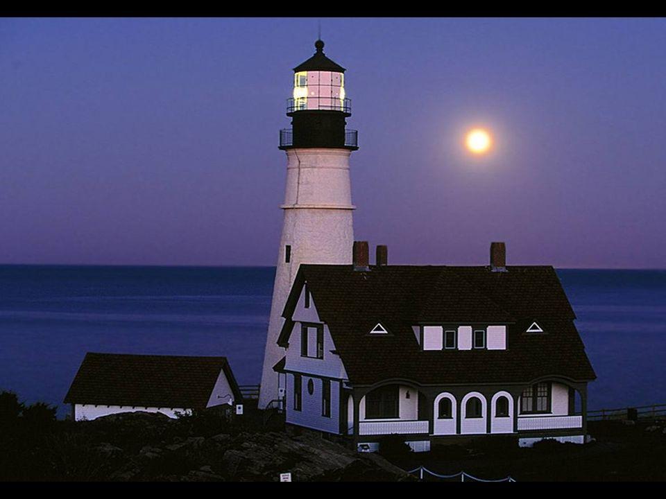 È tutta colpa della luna: quando si avvicina troppo alla terra fa impazzire tutti. William Shakespeare