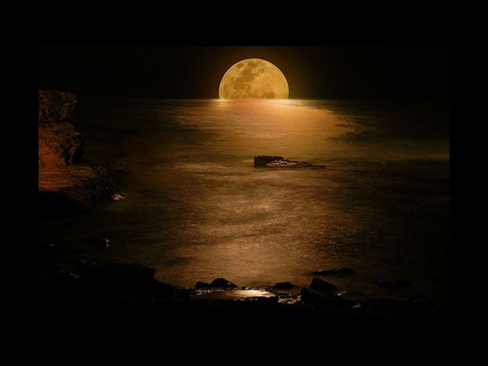 Notte di luna come un viandante passi dallaltra parte del mare con la tua pallida lanterna oscillante. Io sono uno straniero, solitario e distratto; s