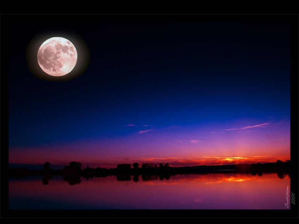La luna...silenziosa.....nella luce della notte protegge l incanto dei colori dell amore....