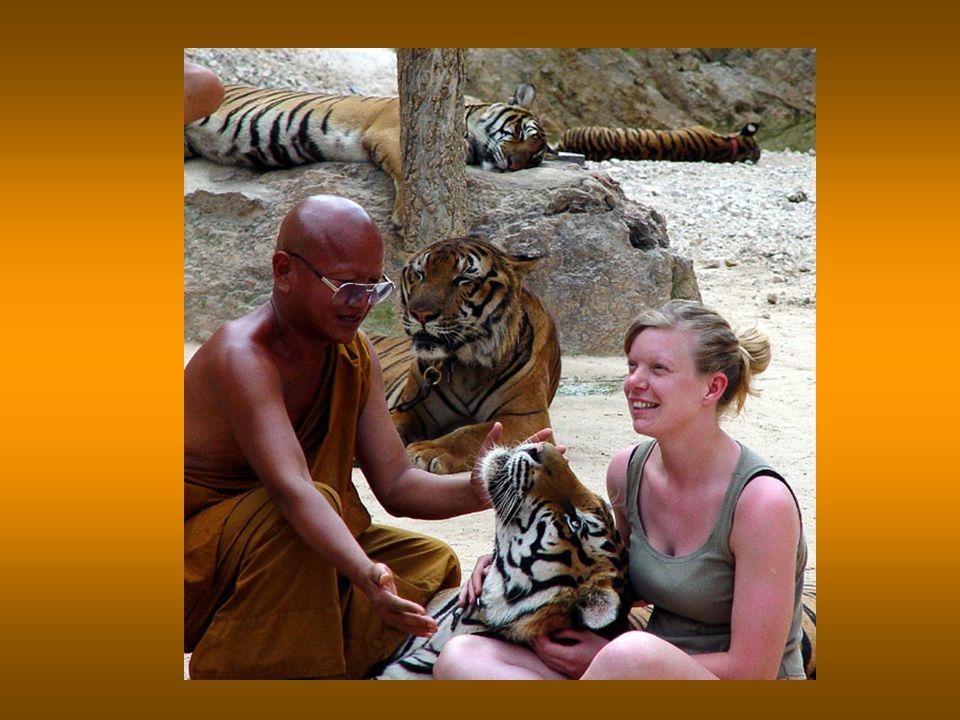 I visitatori in cambio di qualche foto lasciano dei doni ai monaci
