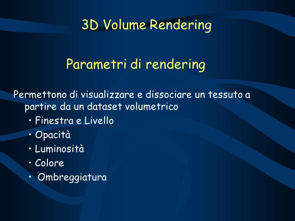 Parametri di rendering Permettono di visualizzare e dissociare un tessuto a partire da un dataset volumetrico Finestra e Livello Opacità Luminosità Colore Ombreggiatura 3D Volume Rendering