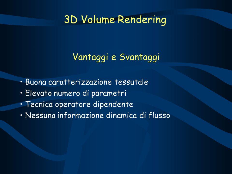 Vantaggi e Svantaggi Buona caratterizzazione tessutale Elevato numero di parametri Tecnica operatore dipendente Nessuna informazione dinamica di flusso 3D Volume Rendering
