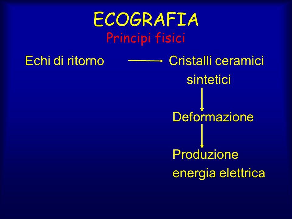 ECOGRAFIA Principi fisici Echi di ritorno Cristalli ceramici sintetici Deformazione Produzione energia elettrica