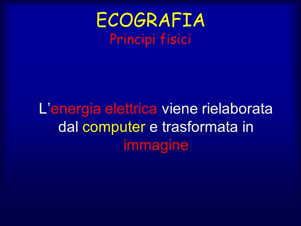 ECOGRAFIA Principi fisici Lenergia elettrica viene rielaborata dal computer e trasformata in immagine