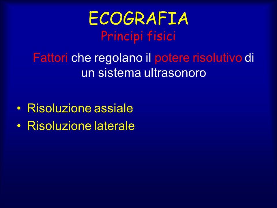 ECOGRAFIA Principi fisici Fattori che regolano il potere risolutivo di un sistema ultrasonoro Risoluzione assiale Risoluzione laterale