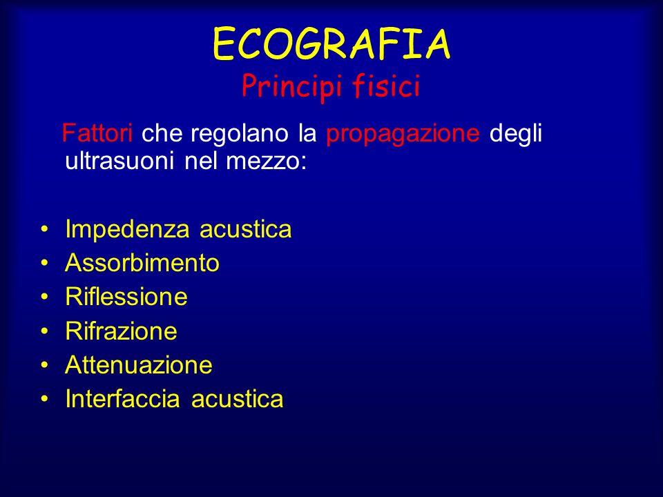 ECOGRAFIA Principi fisici Fattori che regolano la propagazione degli ultrasuoni nel mezzo: Impedenza acustica Assorbimento Riflessione Rifrazione Attenuazione Interfaccia acustica