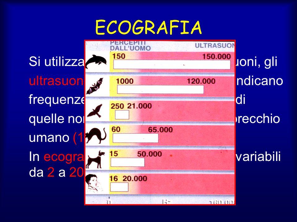 ECOGRAFIA Si utilizzano un tipo particolare di suoni, gli ultrasuoni, così denominati perché indicano frequenze sonore poste al di sopra di quelle normalmente percepite dallorecchio umano (16-20.000 Hz) In ecografia si utilizzano frequenze variabili da 2 a 20 MHz