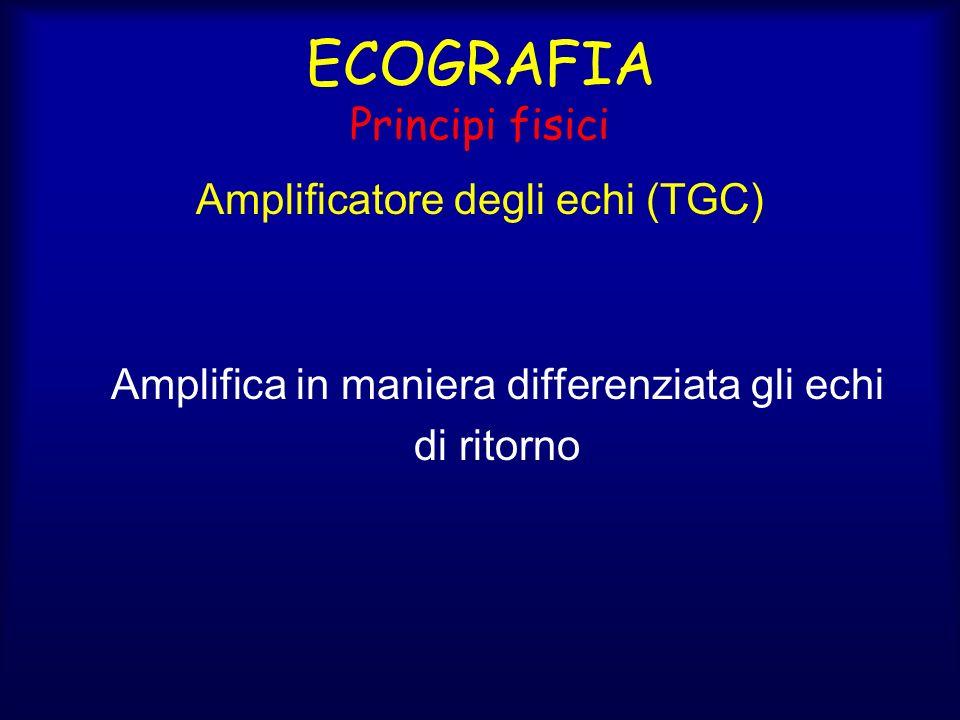 Amplificatore degli echi (TGC) Amplifica in maniera differenziata gli echi di ritorno ECOGRAFIA Principi fisici