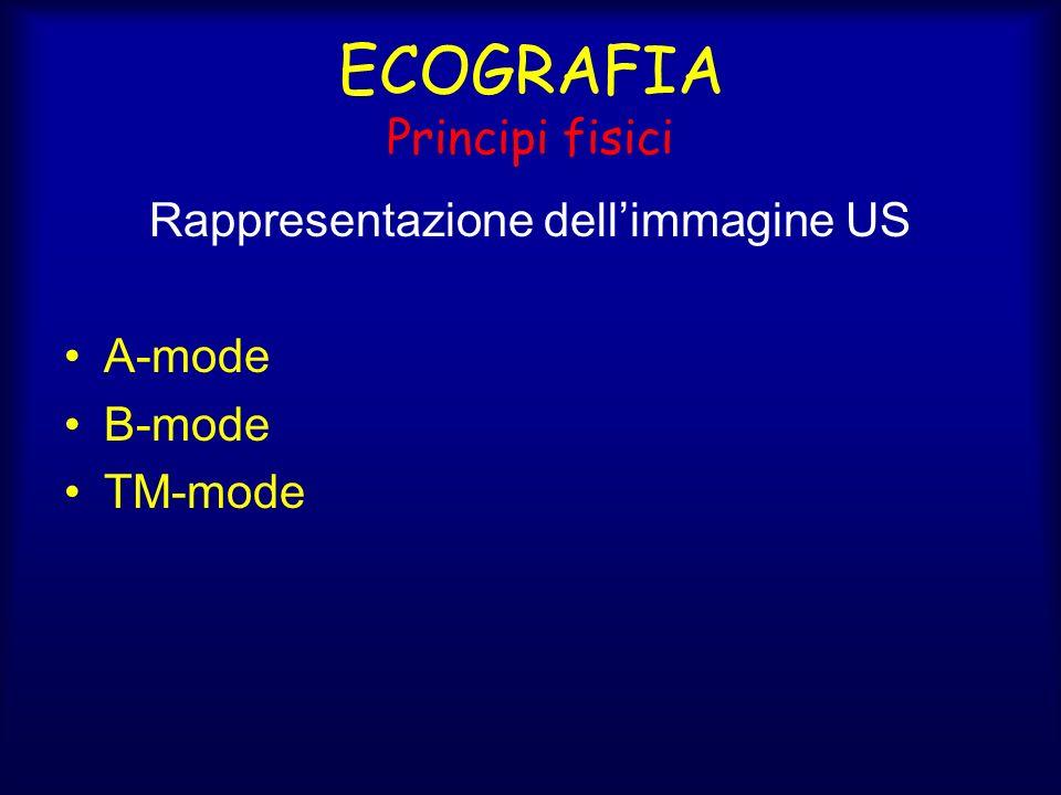 ECOGRAFIA Principi fisici Rappresentazione dellimmagine US A-mode B-mode TM-mode