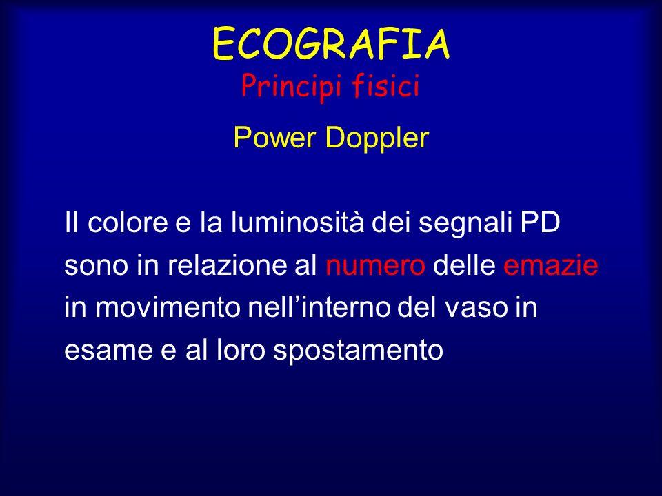 ECOGRAFIA Principi fisici Power Doppler Il colore e la luminosità dei segnali PD sono in relazione al numero delle emazie in movimento nellinterno del vaso in esame e al loro spostamento