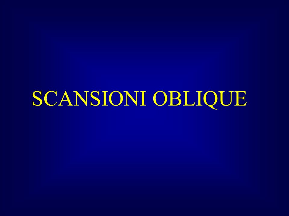 SCANSIONI OBLIQUE