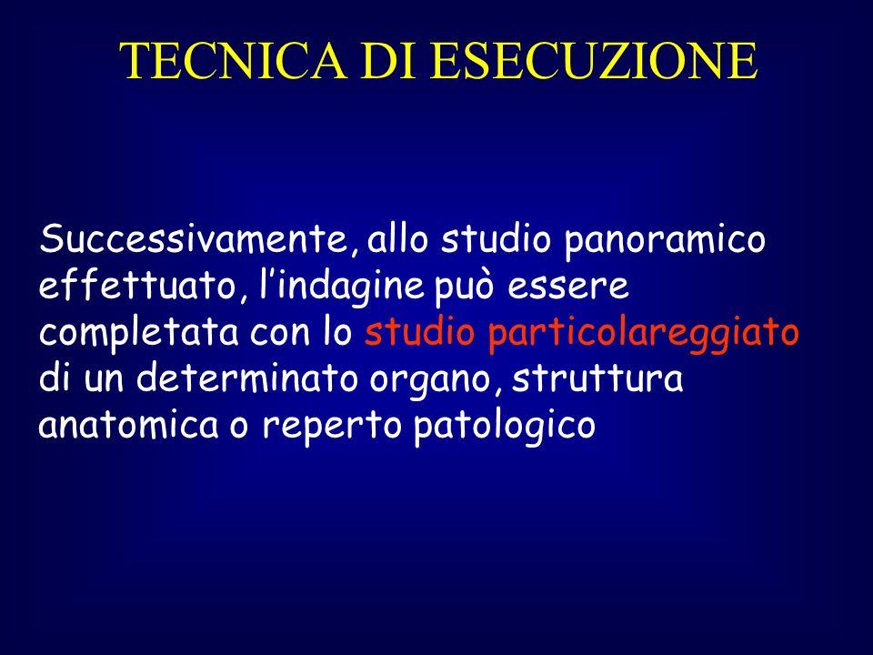 TECNICA DI ESECUZIONE Successivamente, allo studio panoramico effettuato, lindagine può essere completata con lo studio particolareggiato di un determinato organo, struttura anatomica o reperto patologico